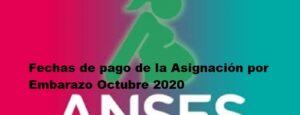 Fechas de pago de la Asignación por Embarazo Octubre 2020